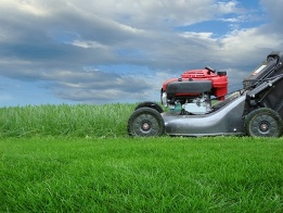 Lawn Mower - Lawnmowing Albury Wodonga