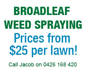 Broadleaf Weed Spraying Albury Wodonga